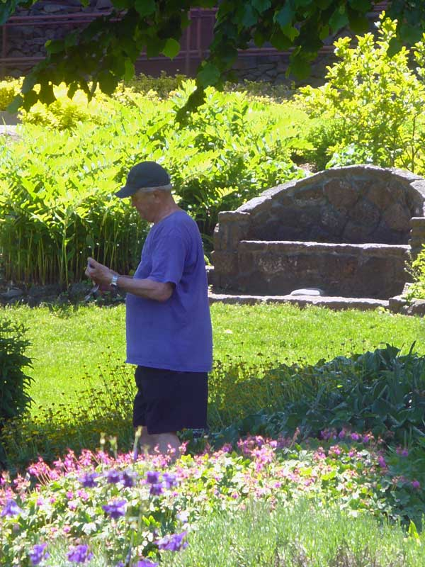 MooScience: Man enjoying garden. A large waistline can be a sign of metabolic syndrome.